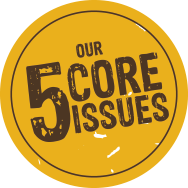 5 core issues